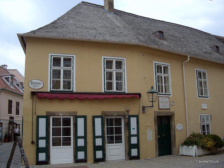Haus der Neunten in Baden bei Wien, Austria