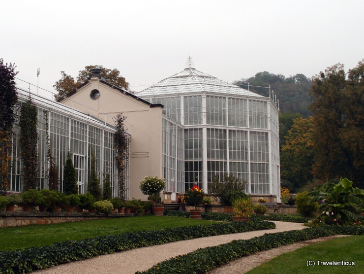 Palm house of Pillnitz Palace in Dresden, Germany