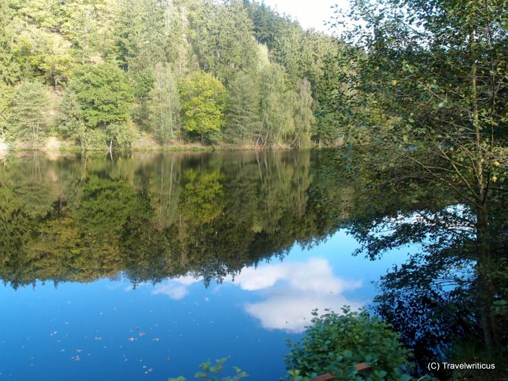 Pond at the Selke Valley Railway in Harz, Germany