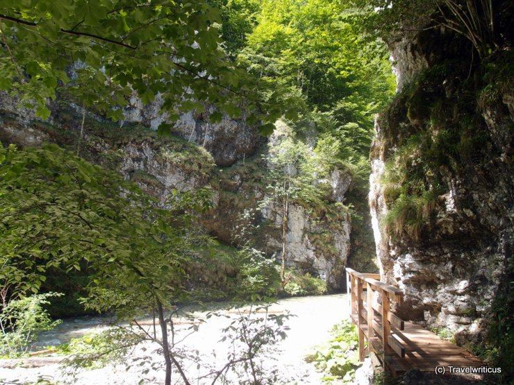 Gorge at the Mendlingtal, Austria