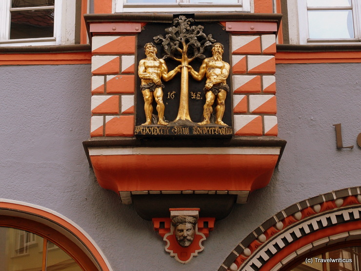 Relief of a laurel tree in Naumburg (Saale), Germany