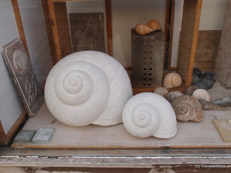 Snail shells in a shop in Naumburg (Saale), Germany