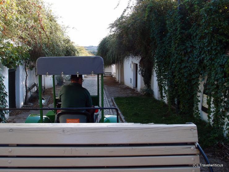 On a farm tractor tour through the wine cellar lanes of Poysdorf, Austria