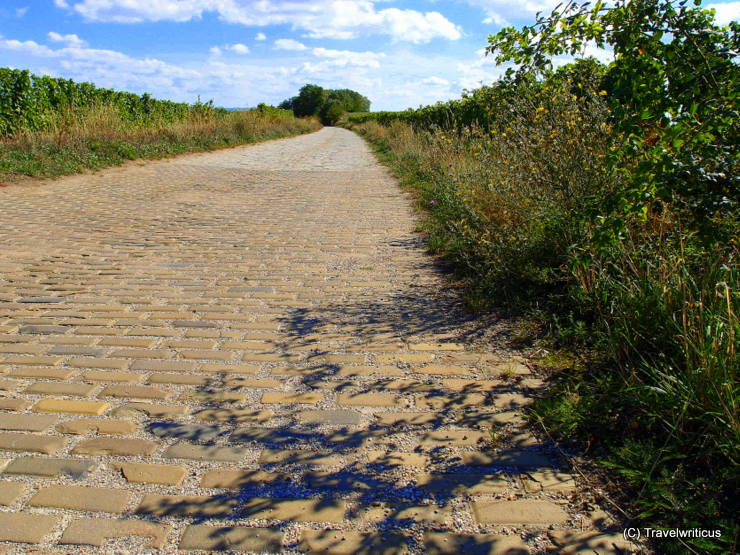 Yellow brick road made of Šatov clinker in Poysdorf, Austria