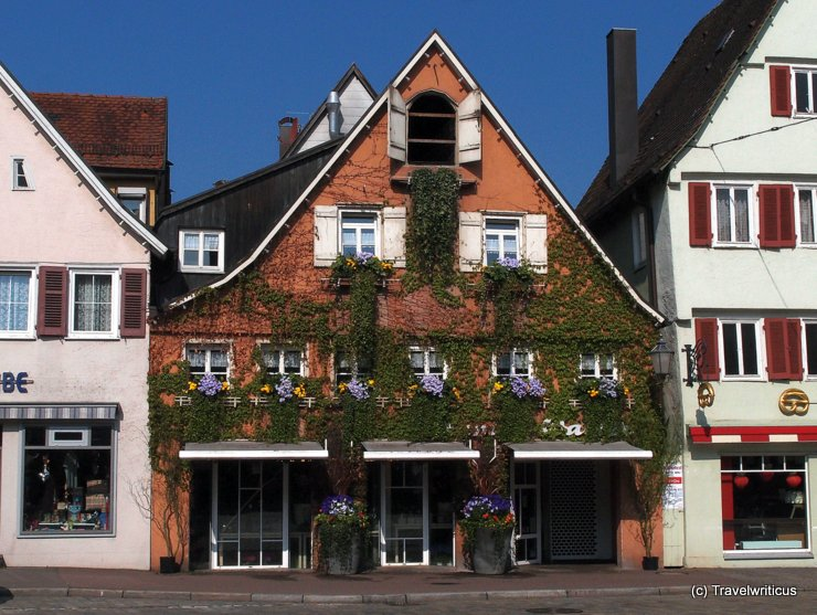 Floral decoration in Schorndorf, Germany