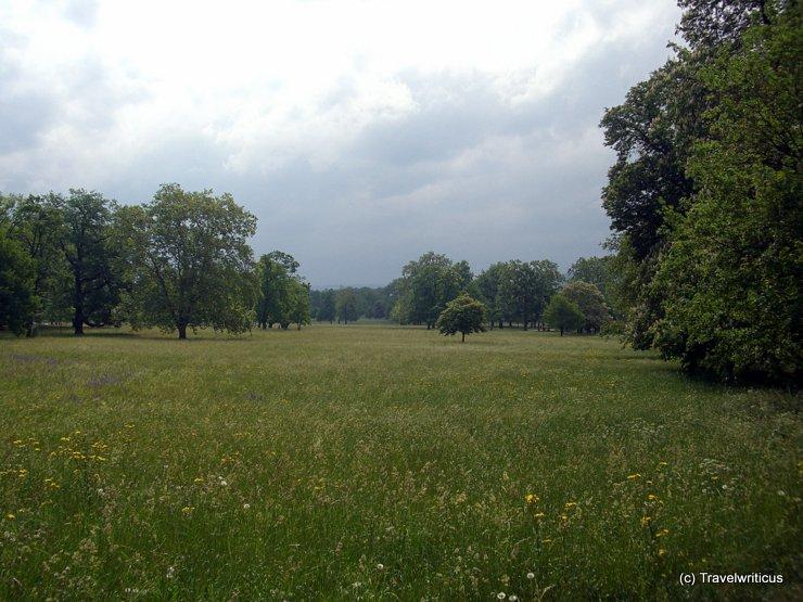 Fodder meadow in Stuttgart, Germany