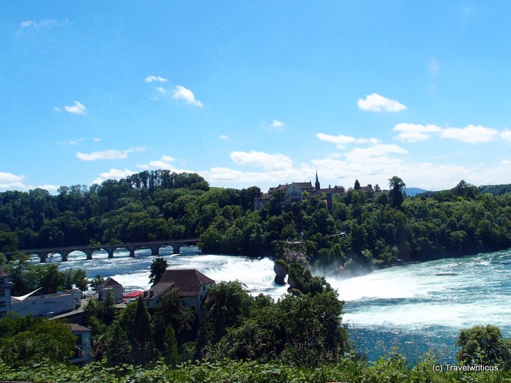 View of the Rhine Falls from the train