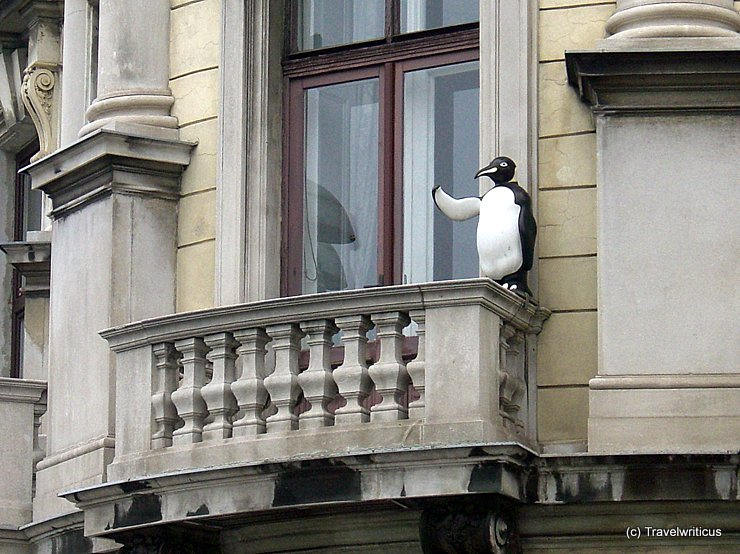 Penguin on a balcony in Vienna, Austria