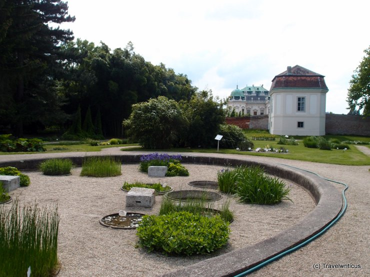 Botanical garden of the university of Vienna