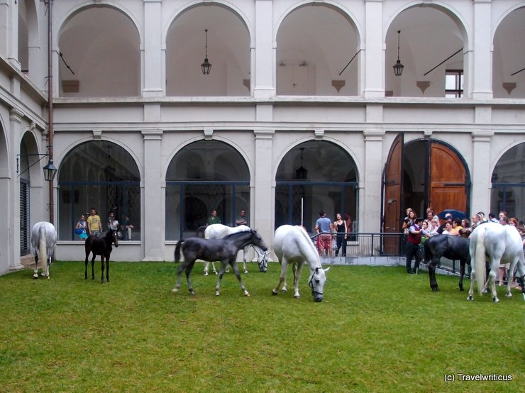 Home of the Lippizaner horses in Vienna, Austria: The Stallburg
